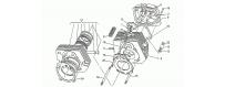 Head - Cylinder - Piston
