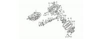 Rear bevel gear