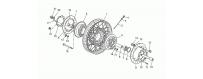 Front wheel, spokes
